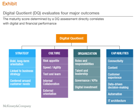 McKinsey Digital Quotient Model